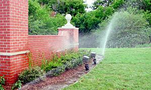 Grass Sprinkler
