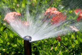 Irrigration Sprinkler