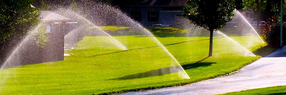 Irrigation Systems Lighting And Sprinkler System